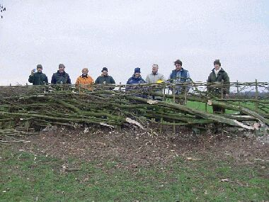 Volunteers posing by completed section of hedge!