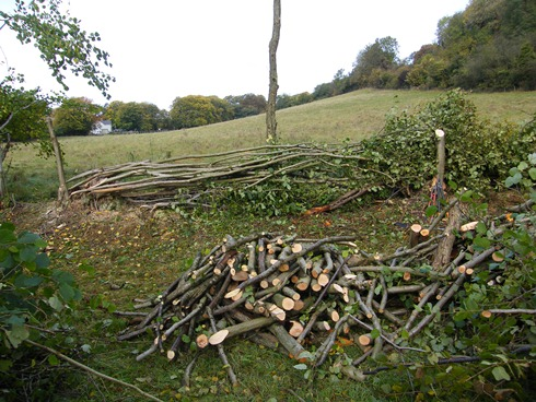 Same view as left, laid with live              stake retained at left of hazel stool to retain next              section of hedge. Firewood foreground from surplus hazel.