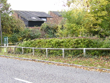 Completed hedge, as a South of England hedge, it's bushy both sides.