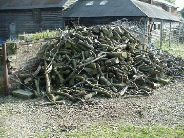 This logpile was extracted from the same hedge as the woodchips on the left