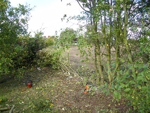 Work unde rway looking to start of hedge...