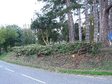 Completed hedge from other direction