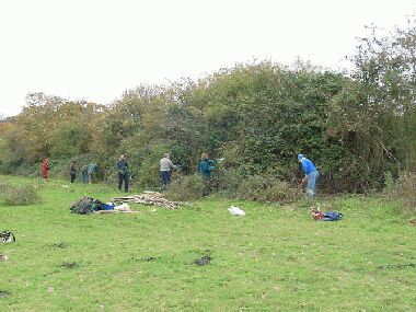 Intial clearing out - fighting through the bramble to reach the hedge!